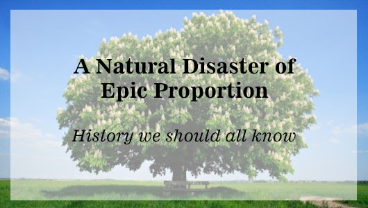 A Natural Disaster Of Epic Proportion: History We should All Know